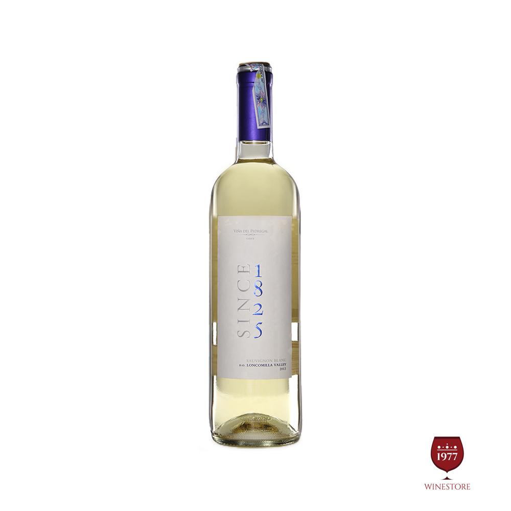 Rượu Vang Chile Since 1825 Classico Sauvignon Blanc