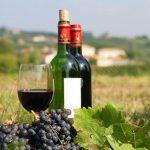 Tìm hiểu về các loại rượu vang pháp theo từng vùng miền