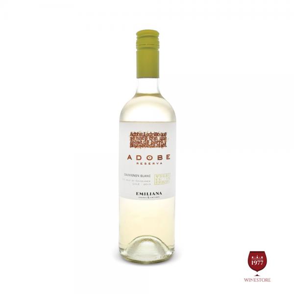 Rượu Vang Chile Adobe Sauvignon Blanc