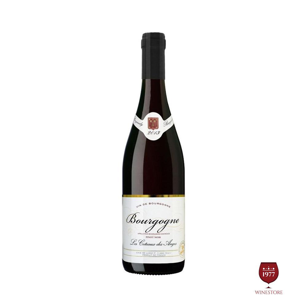 Beaune Greves 2013 Pinot Noir