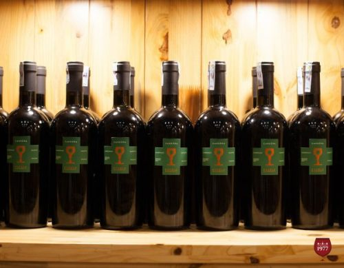 rượu vang CANDORA IGT