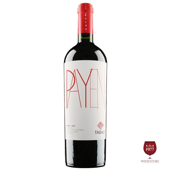Rượu Vang Chile Cao Cấp Tabali Payen Blend