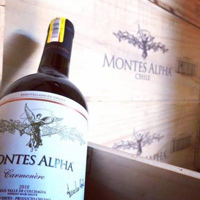 sản xuất vang Montes Alpha Carmenere