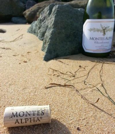 thưởng thức rượu vang Montes Alpha Chardonnay