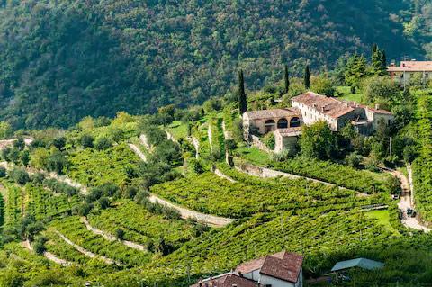 xuất xứ của vang Amarone Villa