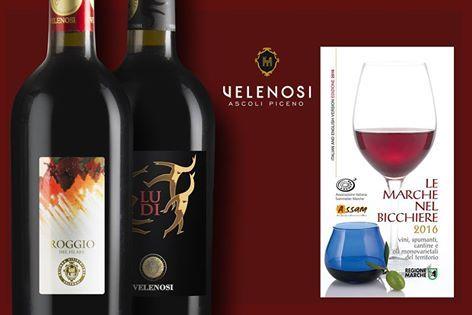 giới thiệu rượu vang Roggio
