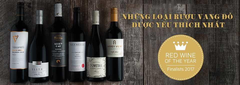 những loại rượu vang đỏ được ưa chuộng nhất