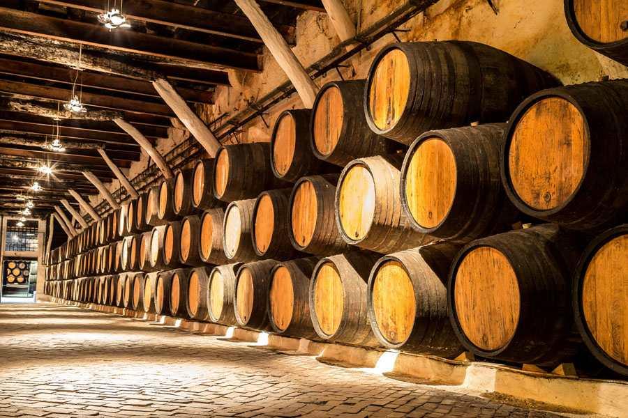 tìm hiểu về dòng rượu vang ý
