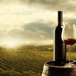 5 Chai Rượu Vang Nổi Tiếng Nhất Italia