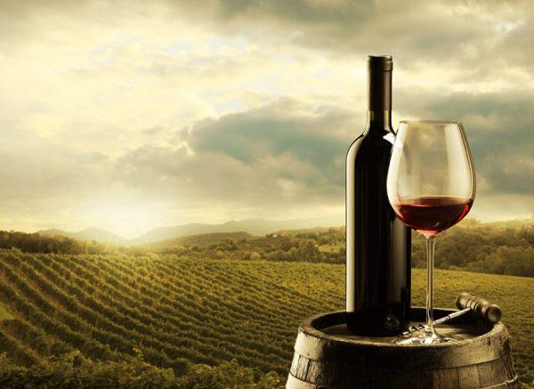 5 chai rượu vang nổi tiếng Italia