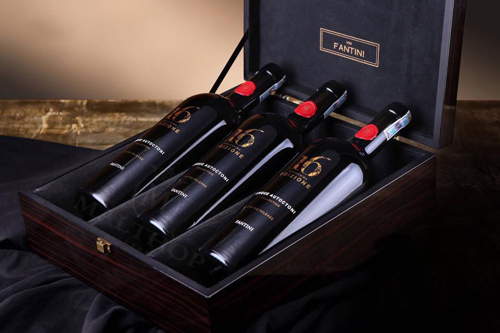 giới thiệu rượu vang 16 Edizione