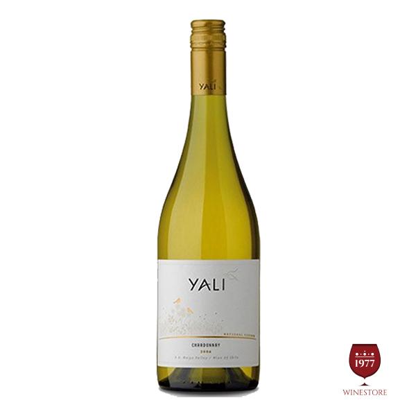 Rượu Vang Yali Reserva Trắng – Mua Rượu Vang Chile Ngon